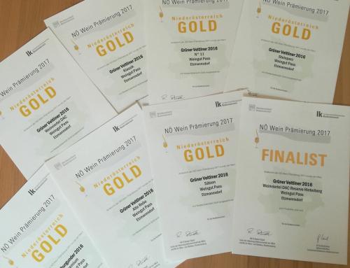 7x Gold und im Finale der NÖ Weinprämierung
